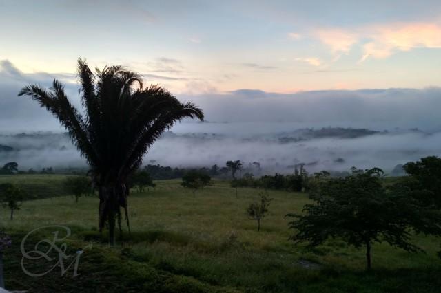 MorningFog_1